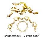 golden ornamental segment  ... | Shutterstock . vector #719855854