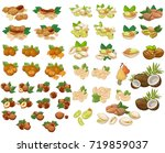 set of cartoon vector... | Shutterstock .eps vector #719859037