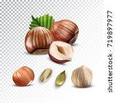 vector realistic illustration... | Shutterstock .eps vector #719897977