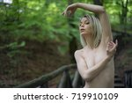 forest fairy | Shutterstock . vector #719910109