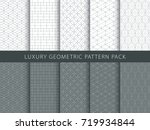 luxury geometric vector... | Shutterstock .eps vector #719934844