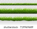 grass set | Shutterstock . vector #719969689