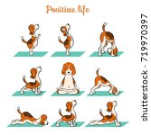 cartoon funny dog beagle doing... | Shutterstock .eps vector #719970397