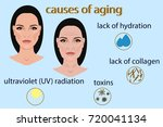 causes of aging  vector... | Shutterstock .eps vector #720041134