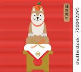 year of dog 2018  invitation... | Shutterstock .eps vector #720042295