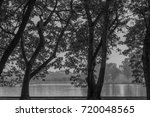 trees in the park back and... | Shutterstock . vector #720048565