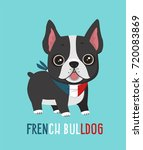 dog breed french bulldog. puppy ... | Shutterstock .eps vector #720083869