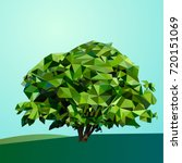 geometric vector tree low poly | Shutterstock .eps vector #720151069