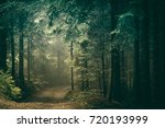 countryside road through the... | Shutterstock . vector #720193999