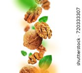 walnuts and leaves falling from ... | Shutterstock . vector #720333307