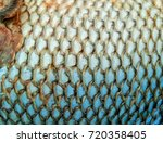 Small photo of Fish skin afther remove the scales out ready to cook