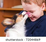 A Little Dog Licking A Boy's...