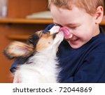 Stock photo a little dog licking a boy s nose 72044869
