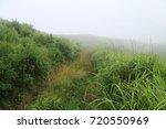 summer landscape  fog  pathway  ... | Shutterstock . vector #720550969