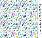 wildflower summer seamless... | Shutterstock .eps vector #720653659