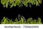 adorable garden jungle leaf... | Shutterstock . vector #720662404
