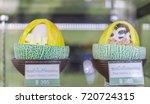 editorial use only  korean... | Shutterstock . vector #720724315