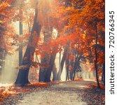 autumn city park with sunbeams. | Shutterstock . vector #720766345