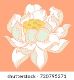 colorful lotus vector... | Shutterstock .eps vector #720795271