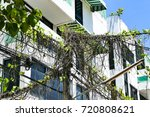 the vine climbs up on the power ... | Shutterstock . vector #720808621