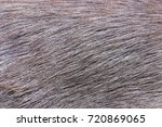 deer fur gradient skin for... | Shutterstock . vector #720869065
