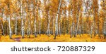 birch grove with a road on... | Shutterstock . vector #720887329
