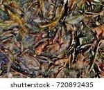 scenery of public natural... | Shutterstock . vector #720892435