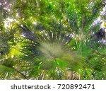 scenery of public natural... | Shutterstock . vector #720892471