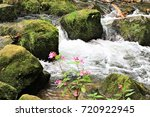 an image of a creek in the... | Shutterstock . vector #720922945