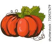 pumpkin. vector illustration. | Shutterstock .eps vector #720927679