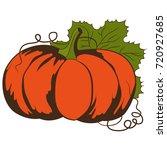 pumpkin. vector illustration. | Shutterstock .eps vector #720927685