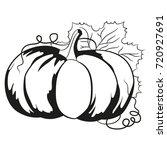 pumpkin. vector illustration. | Shutterstock .eps vector #720927691