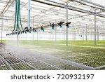 Interior Of Modern Hothouse...