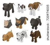 vector set of different breed... | Shutterstock .eps vector #720974035