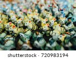 Small Ceramic Mold Animal As A...