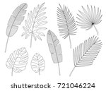 set of leaves in the contour...   Shutterstock .eps vector #721046224