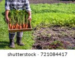 local farmer holding a box of... | Shutterstock . vector #721084417
