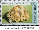 TOGO - CIRCA 1996: A stamp printed in Togo  shows animal reptile turtle Asterochelys yniphora, circa 1996 - stock photo