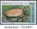 Togo - CIRCA 1996: A stamp printed in Togo shows animal reptile turtle Geoemyda spengieri, circa 1996 - stock photo