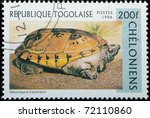 TOGO - CIRCA 1996: A stamp printed in Togo shows animal reptile turtle Staurotypus triporcatus, circa 1996 - stock photo