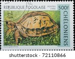 TOGO  - CIRCA 1996: A stamp printed in Togo  shows animal reptile turtle Cuora galbinifrons, circa 1996 - stock photo