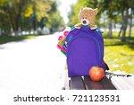 school backpack   apple  and...   Shutterstock . vector #721123531