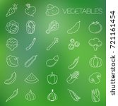 thin line vegetable vector icon ... | Shutterstock .eps vector #721161454