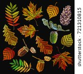embroidery autumn collection.... | Shutterstock .eps vector #721310815