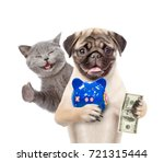 Stock photo happy cat and funny puppy with piggy bank and dollar in the paws isolated on white background 721315444