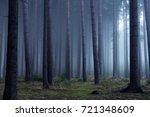 forest in autumn morning mist | Shutterstock . vector #721348609