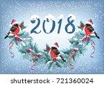 Christmas Card With  Bullfinch...