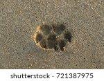 footprints in the sand | Shutterstock . vector #721387975