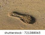 footprints in the sand | Shutterstock . vector #721388065