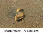 footprints in the sand | Shutterstock . vector #721388125